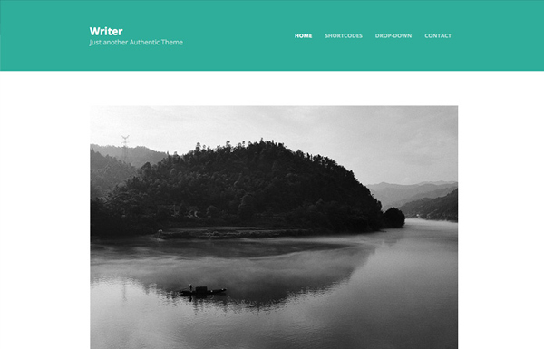 writer 20 Minimal Wordpress Themes by Authentic Themes