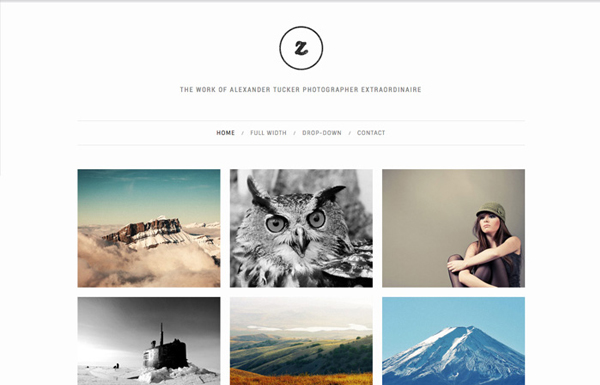 zoom 20 Minimal Wordpress Themes by Authentic Themes