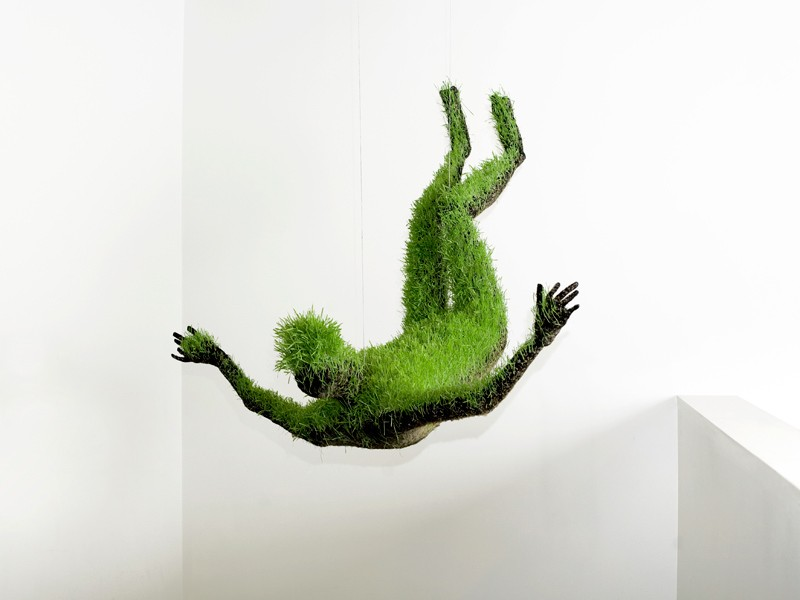 Lifes of grass by Mathilde Roussel