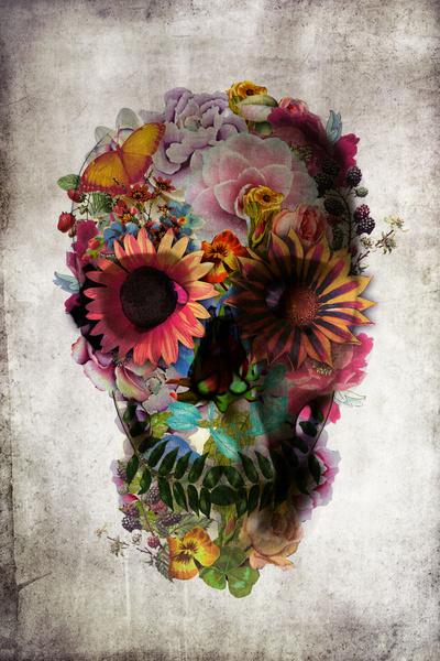 Skull 2 by Ali Gulec