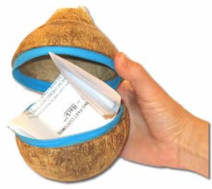 coconut1_lg[1]