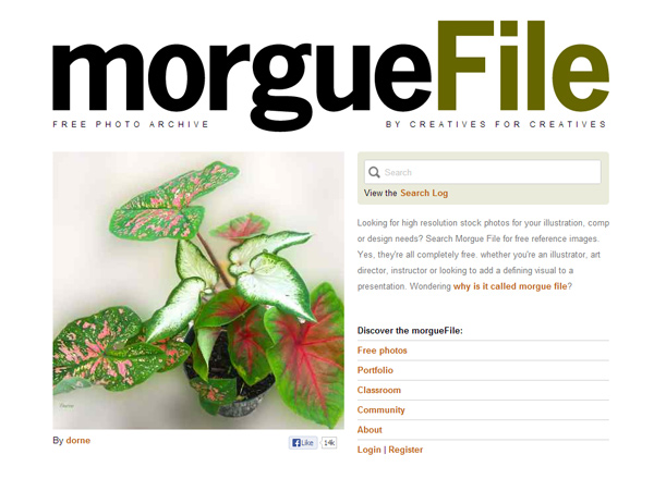 morguefile 25 Free Stock Photo Websites