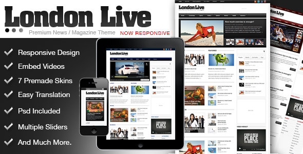 01 preview   large preview14 20 WordPress Review Magazine Themes