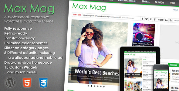 01 preview1   large preview1 20 WordPress Review Magazine Themes