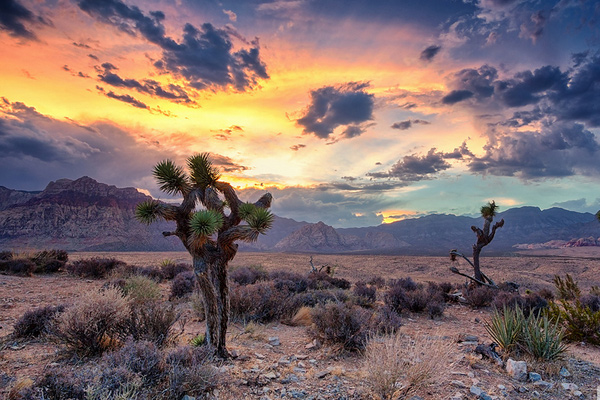 desert monsoon by eddie lluisma Photography: Getting the most out of Diverse Environments