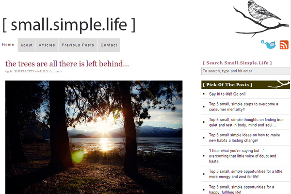 smallsimplelife Become a Minimalist: 10 Blogs Youve Gotta Check out