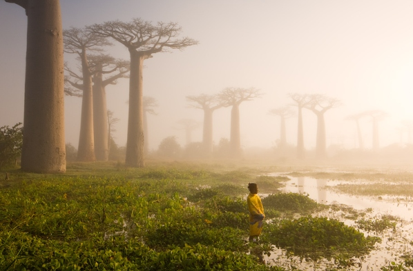 108011 35 Jaw Dropping Photographs from a Planet Called Earth