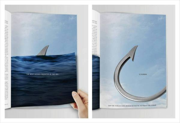 Save the Sharks Campaign
