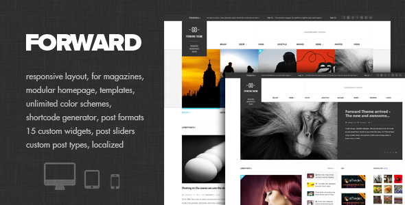 01 cover   large preview12 40 Premium News and Editorial Wordpress Themes