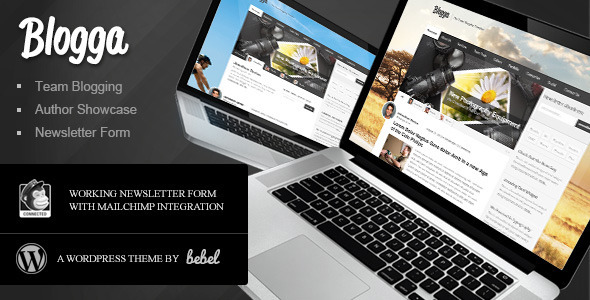1 preview   large preview11 40 Premium News and Editorial Wordpress Themes