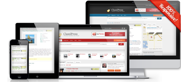 classipress-overview-banner[1]