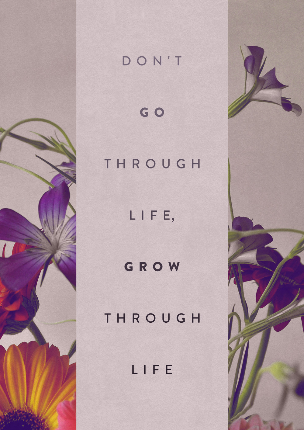 tumblr mt8n3e2tbd1qkxrtro1 12801 20 Inspiring and Beautiful Typographic Quotes