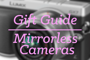mirrorless cameras 2013 Holiday Gift Guide: Creative Products for the Ones You Love