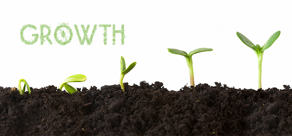 growth1 How to Grow Your Blog to 10,000 Visits a Month Within 6 Months