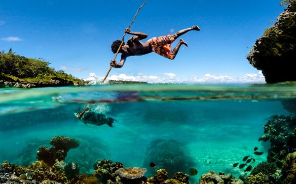 Fisherman pinning a fish with his spear, New Caledonia