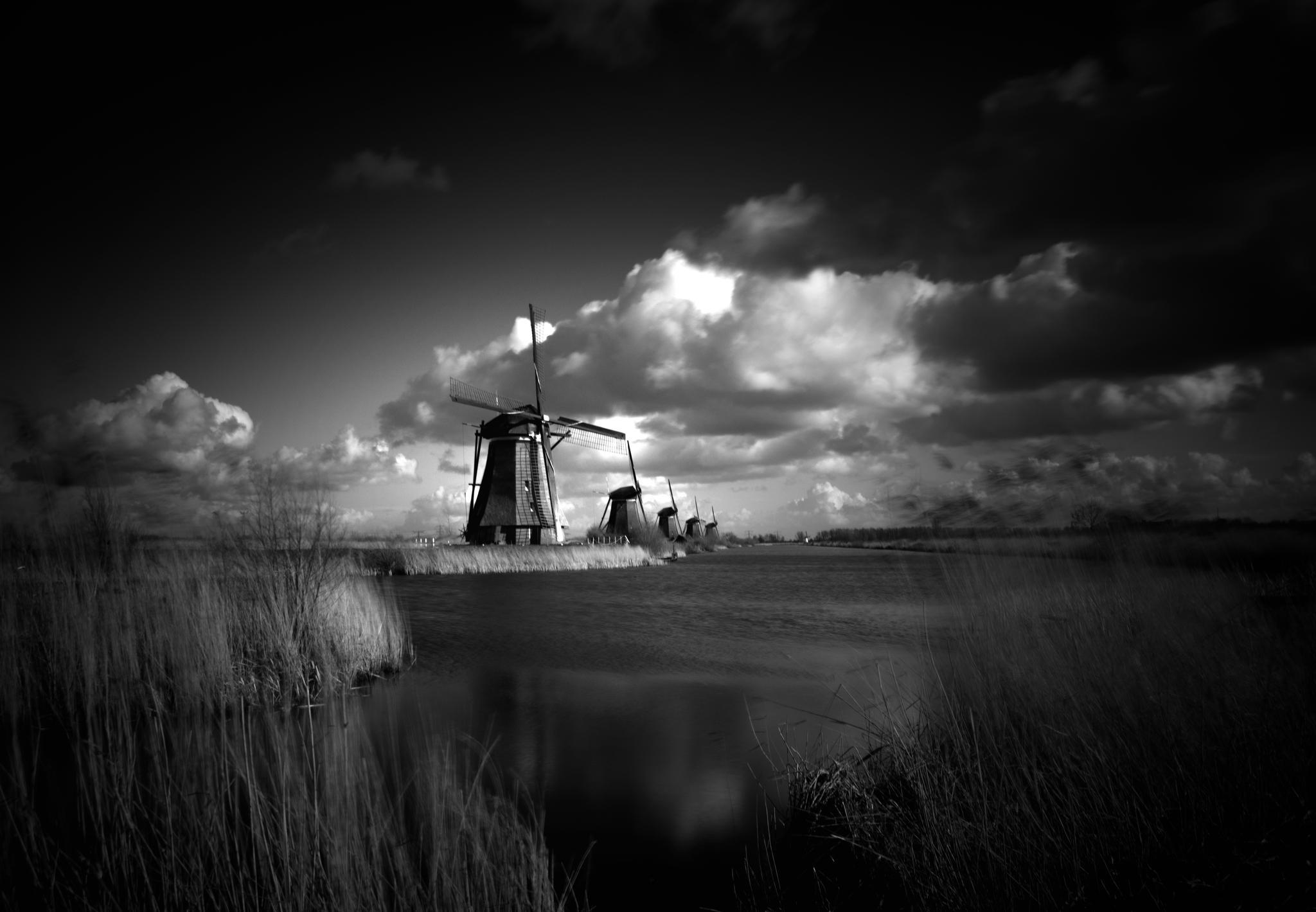 Kinderdijk by Martin Jansen