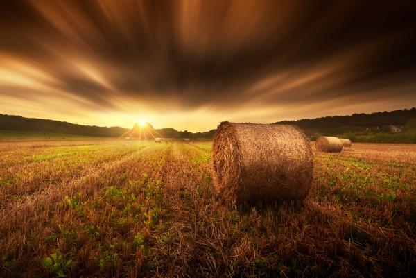 Rolling towards the sun by Ivan Maigua