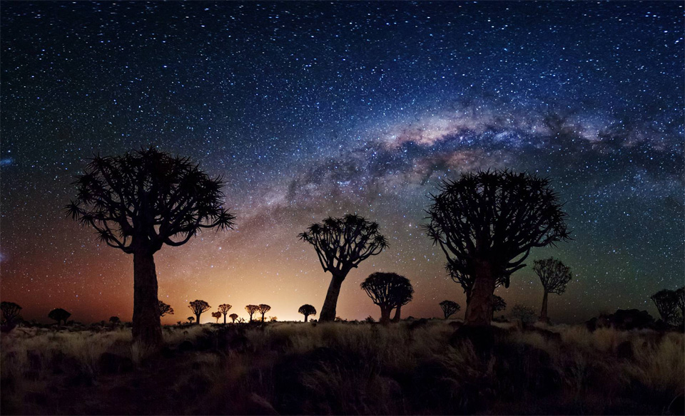 milky way over quiver tree forest by florian breuer 60 Spectacular Examples of Long Exposure Photography