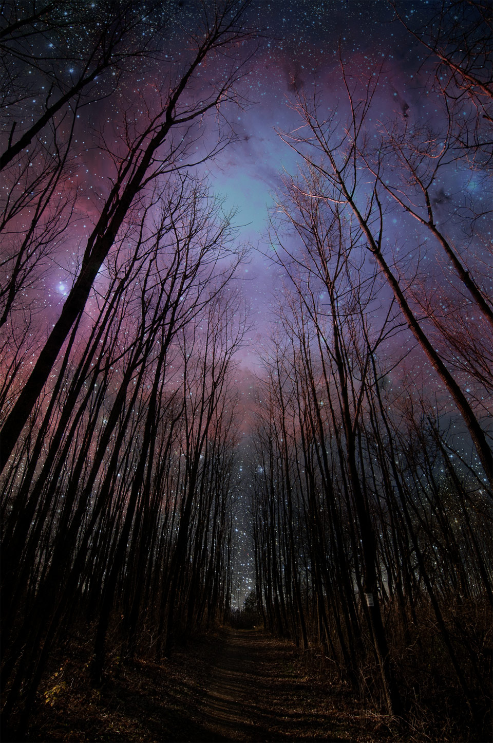Amazing Night Sky Scenery By Marty Desilets