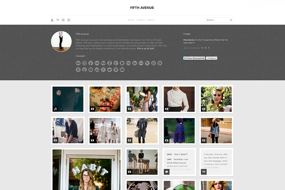 fifth ave 2 f1 55 Elegant and Customizable Tumblr Themes