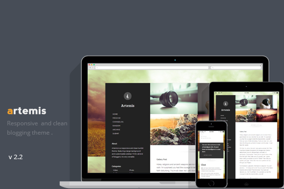 preview f1 55 Elegant and Customizable Tumblr Themes