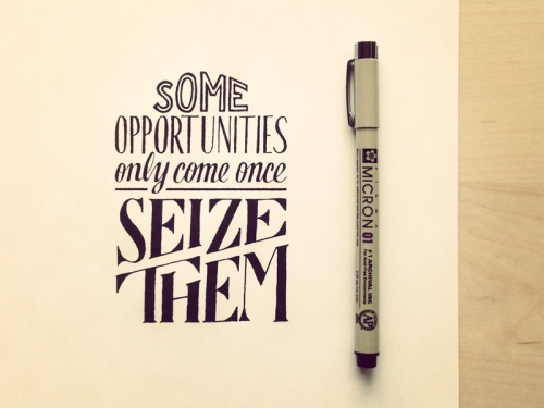 some-opportunities-only-come-once[1]
