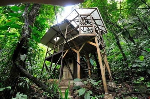 Finca Bellavista Sustainable Treehouse2