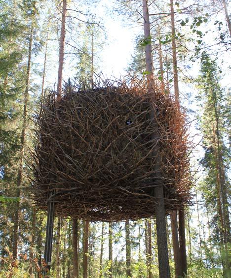 The Bird's Nest by Inrednin Gsgruppen2