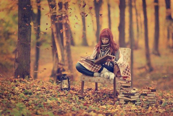 Fairy tales of autumn by Kaliningrad, Russia