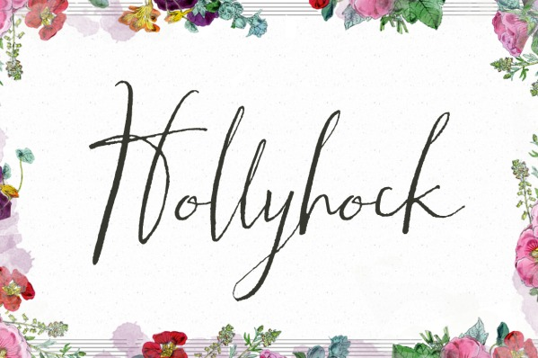 Hollyhock - A Messy Calligraphy Font