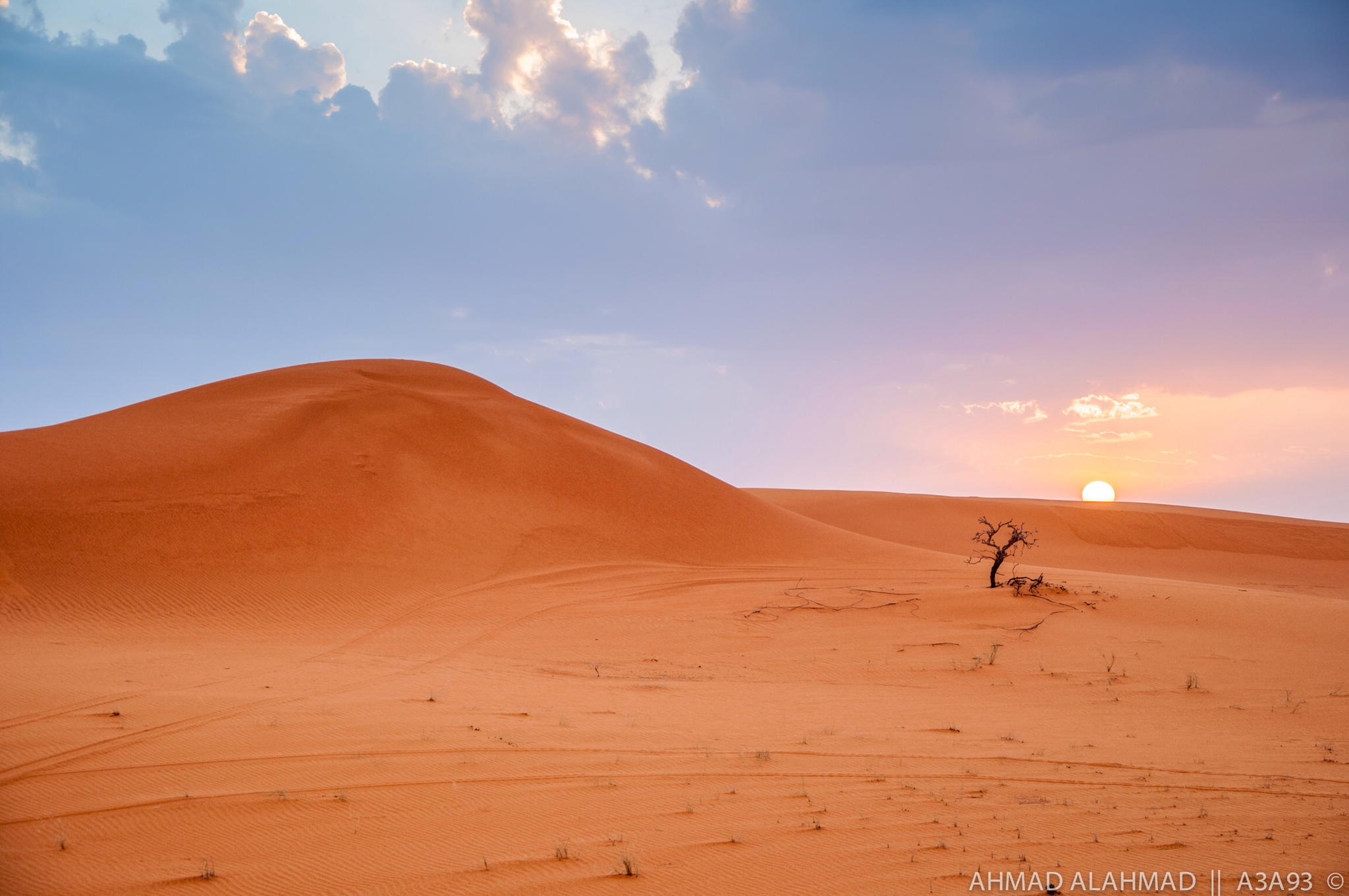A lonely tree in the desert at sunset - Saudi Arabia, by Ahmad BinAhmad