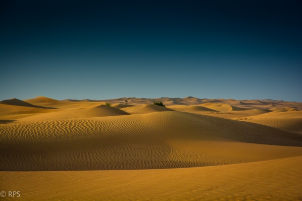 Dubai Dunes by Richard Smith