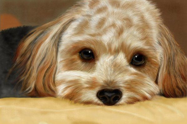 Golden Puppy by Giselle-M