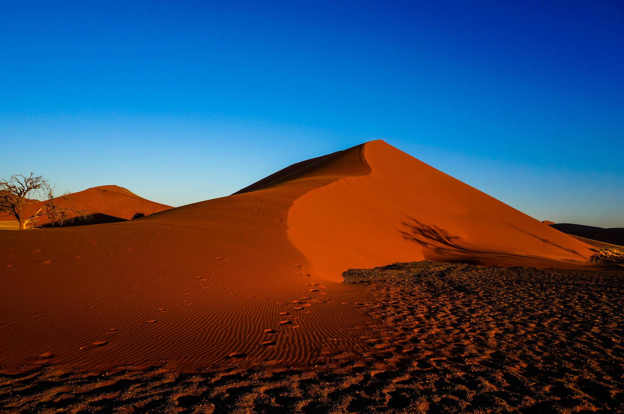 Namib Desert, Namibia by Akiko Miyazaki