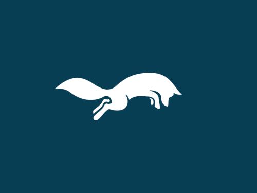 Silver Fox by Stevan Rodic